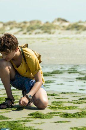 FILM W SZKOLE i na wakacjach: wideoprelekcja o bezpieczeństwie podczas letnich przygód